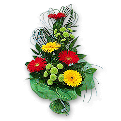 Bouquet of gerberas and chrysanthemums to Chernivtsi